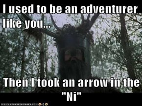 "I used to be an adventurer like you...  Then I took an arrow in the ""Ni"""