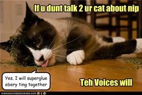 If u dunt talk 2 ur cat about nip
