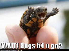 WAIT! Hugs b4 u go?