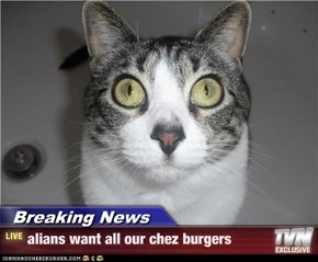 Breaking News - alians want all our chez burgers