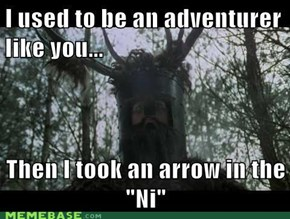 """I used to be an adventurer like you...  Then I took an arrow in the ""Ni"""