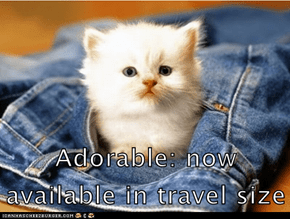 Adorable: now available in travel size
