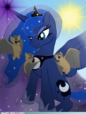 Luna's pets