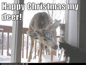 Happy Christmas my deer!