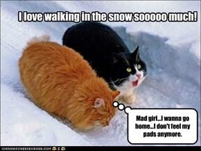 I love walking in the snow sooooo much!