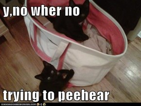 y,no wher no  trying to peehear
