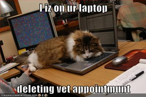I iz on ur laptop  deleting vet appointmunt