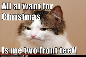 All ai want for Christmas  Is me two front teef!