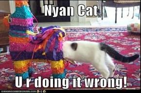 Nyan Cat  U r doing it wrong!
