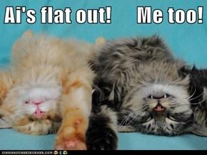 Ai's flat out!      Me too!