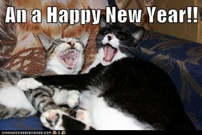 An a Happy New Year!!
