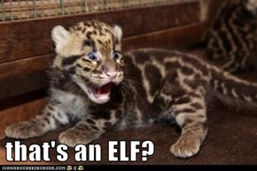 that's an ELF?