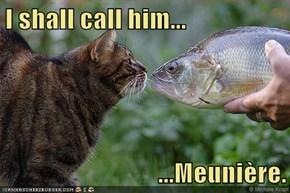 I shall call him...  ...Meunière.