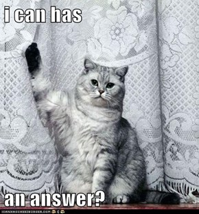 i can has  an answer?