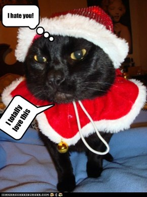 happe holida kitteh!