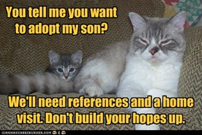 You tell me you want to adopt my son?