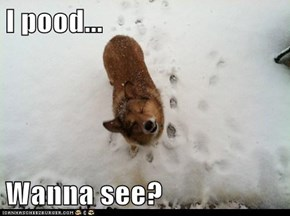 I pood...  Wanna see?