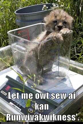 Let me owt sew ai kan 'Runwivakwikness'.
