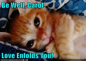 Be Well, Carol  Love Enfolds You!