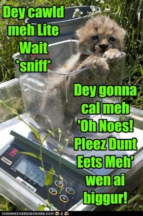 Dey cawld meh Lite Wait*sniff*