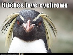 Bitches love eyebrows