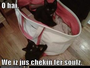 O hai.  We iz jus chekin fer soulz.