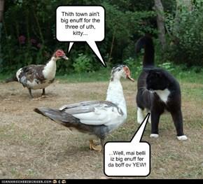 Ya got quack?