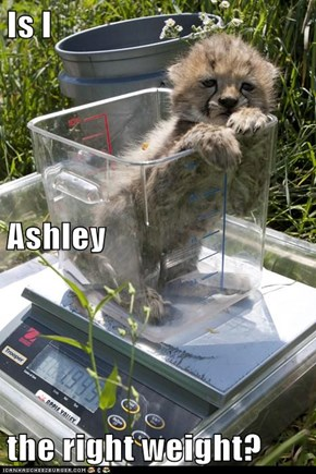 Is I  Ashley  the right weight?