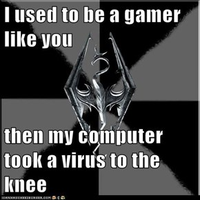 I used to be a gamer like you  then my computer took a virus to the knee