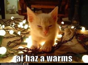 ai haz a warms
