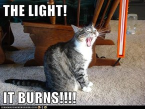 THE LIGHT!  IT BURNS!!!!