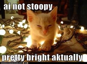 ai not stoopy  pretty bright aktually