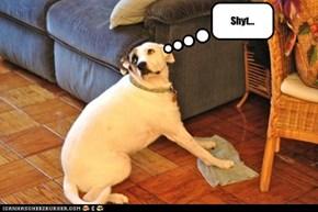 Shyt...