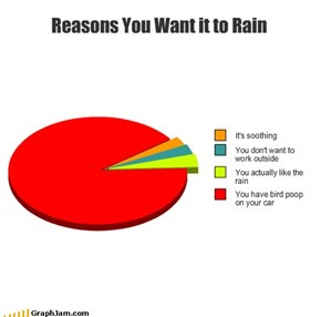 Reasons You Want it to Rain