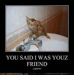 YOU SAID I WAS YOUZ FRIEND