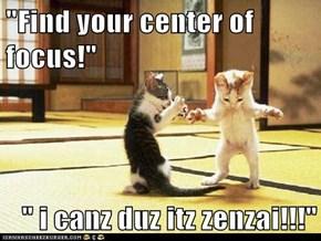 """""""Find your center of focus!""""  """" i canz duz itz zenzai!!!"""""""
