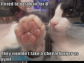 I tried to post bail for U.  They wouldn't take a cheezeburger as pymt.