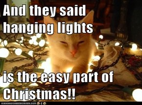 And they said hanging lights  is the easy part of Christmas!!