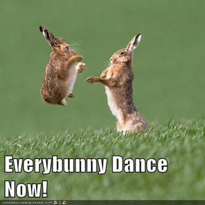 Everybunny Dance Now!