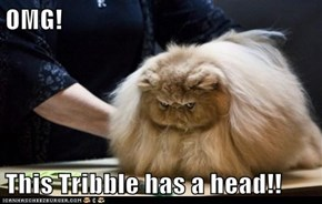 OMG!  This Tribble has a head!!