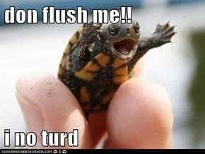 don flush me!!  i no turd