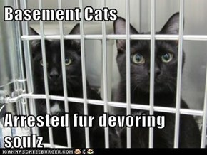 Basement Cats  Arrested fur devoring soulz