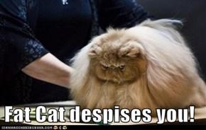 Fat Cat Despises You!