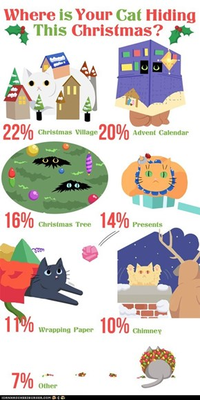 Where Is Your Cat Hiding This Christmas?