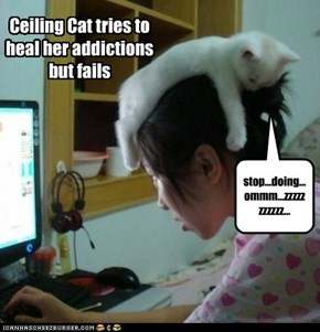 Ceiling Cat's advanced technics