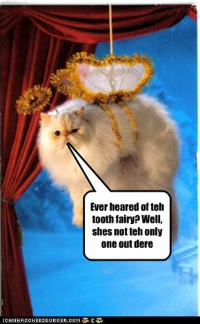 Ever heared of teh tooth fairy? Well, shes not teh only one out dere