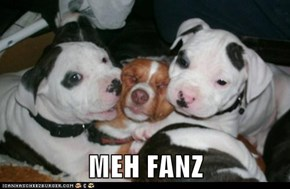 MEH FANZ