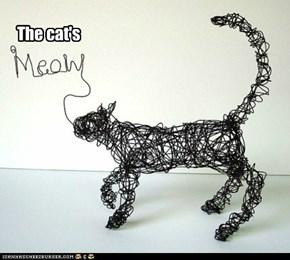 The cat's