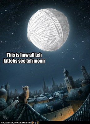 Nothing but a big ball of yarn