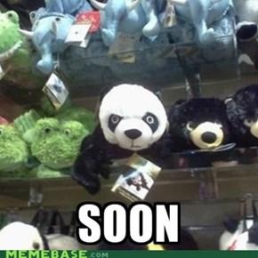 Soon Panda